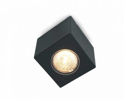Cube XL Dexter design plafondlamp buitenlamp
