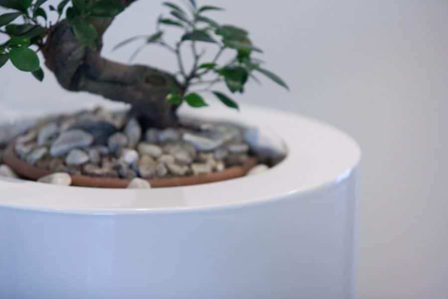 bloembak plantenbak wit glossy hoogglans kunststof polyester tuinextra rechthoekig